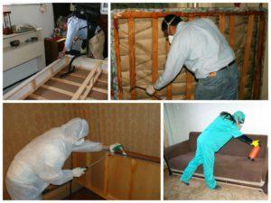 Специалисты по обработке помещения