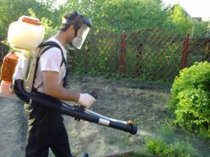 Применение порошков от клопов в садах
