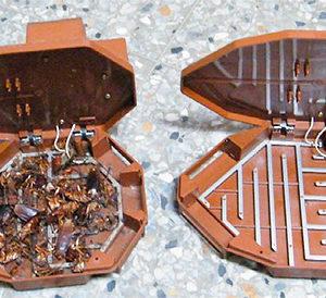 ловушки для тараканов
