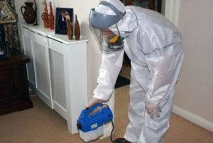Инсектицидная обработка помещения
