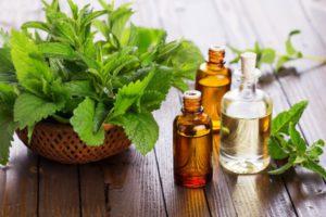 Эфирные масла, помогающие бороться с молью