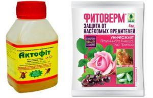 Химические препараты для борьбы с клещом