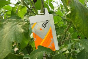 Биопрепараты против паутинного клеща