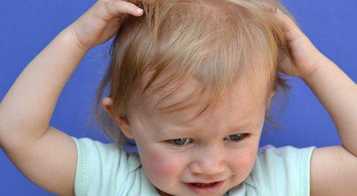 вши на голове у ребенка