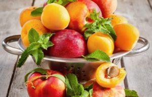 косточковые плоды как продукт необходимого рациона