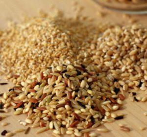 Как избавиться от пищевой моли