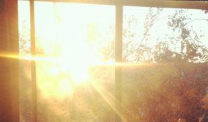 Солнечный свет нейтрализует действие