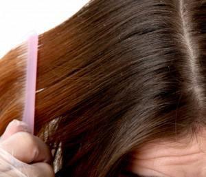 Как применять пероксид для борьбы со вшами