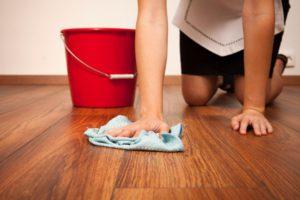 Полынь от блох при мытье полов