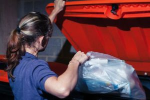 Перед применением нужно выбросить мусор
