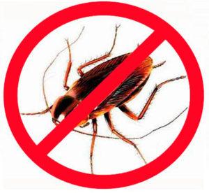 Дохлокс эффективно уничтожает вредителей
