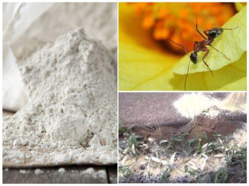 """Средство """"Фас-Дубль"""" от муравьев"""