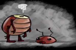таракан может жить без головы